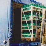 Ładujemy kartony z roślinami do samochodu ciężarowego.