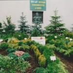 Wystawa ogrodnicza w Łodzi - 2000 r.