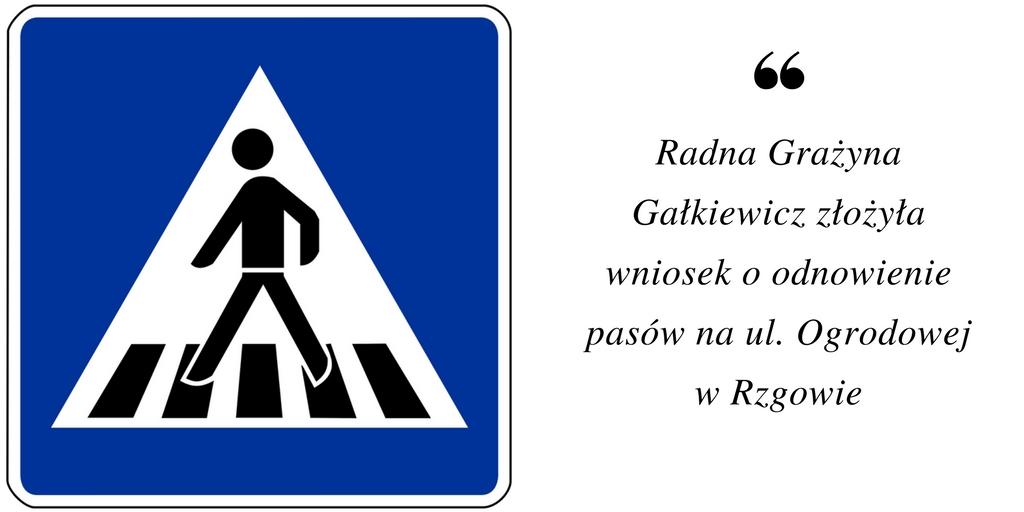 Wniosek o odnowienie pasów na ul. Ogrodowej w Rzgowie