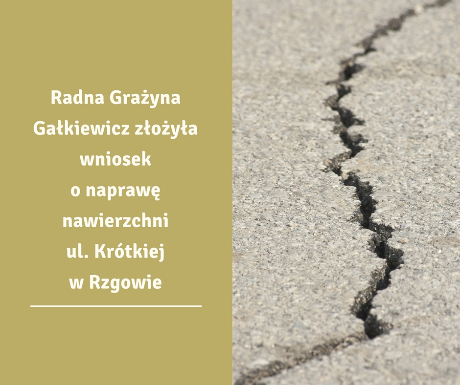 Wniosek o zasypanie dziur na ul. Krótkiej w Rzgowie